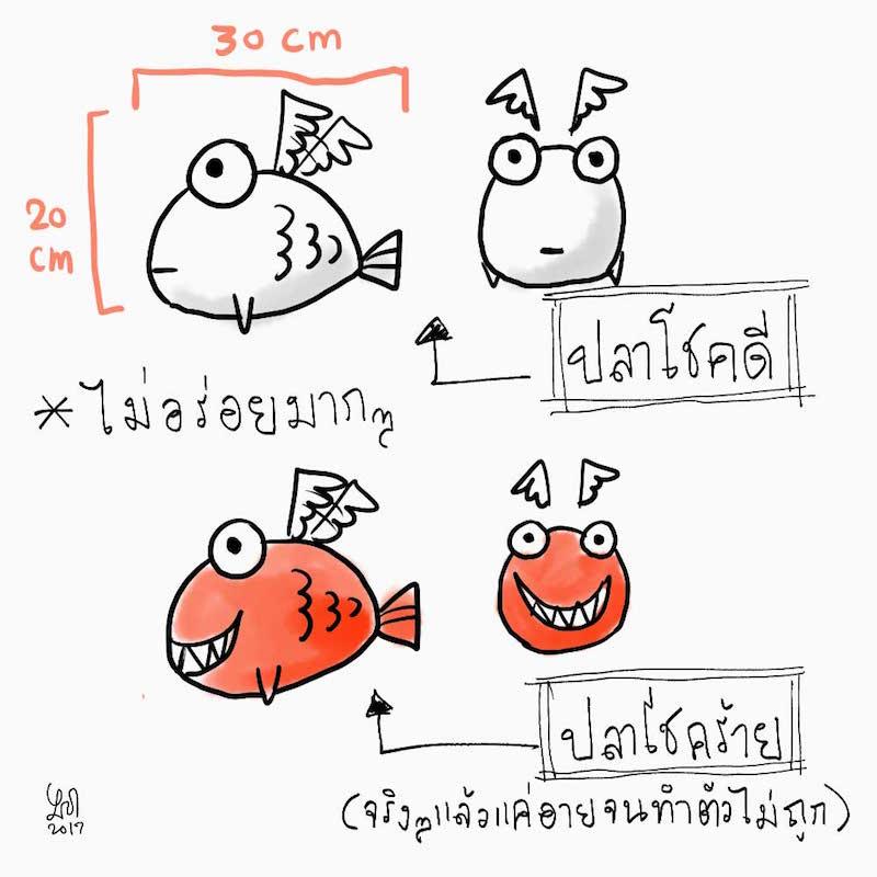 lucky-unlucky-fish